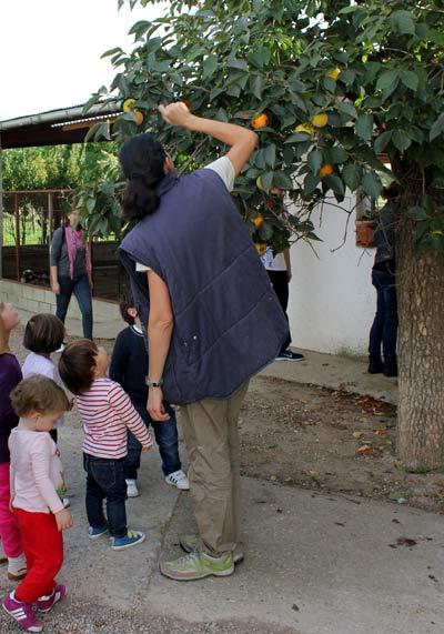 Granja Escuela La Torre