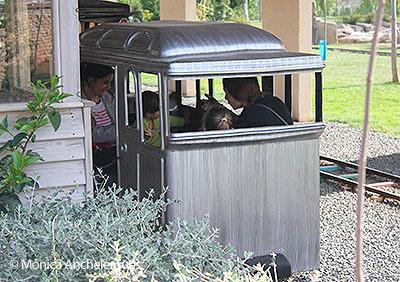 Tren sendaviva