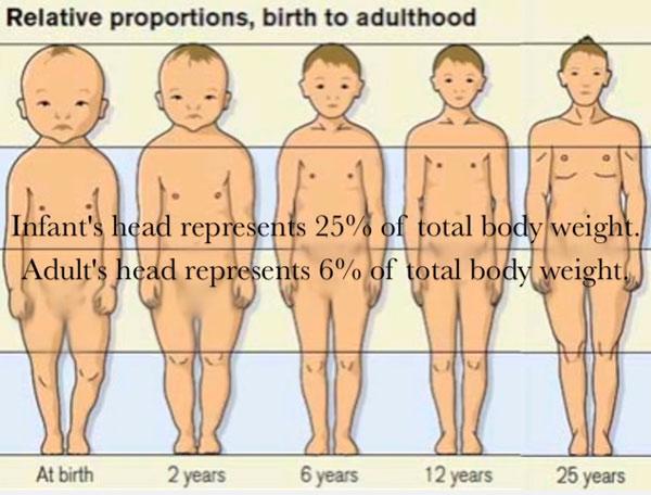 proporcion bebes