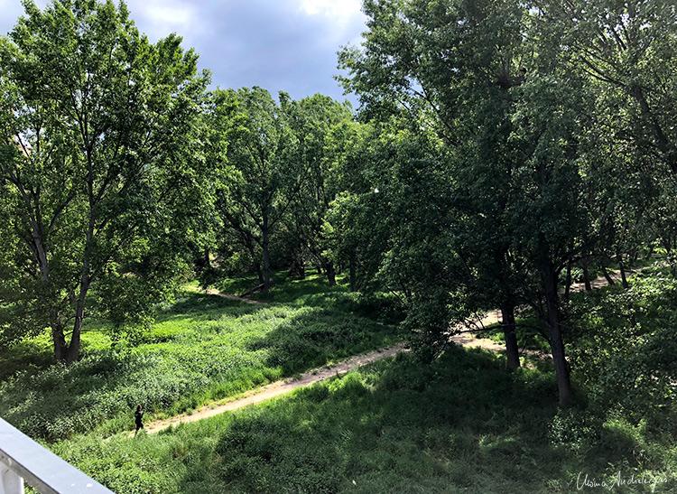 Ebro, Ribera a su paso por Logroño