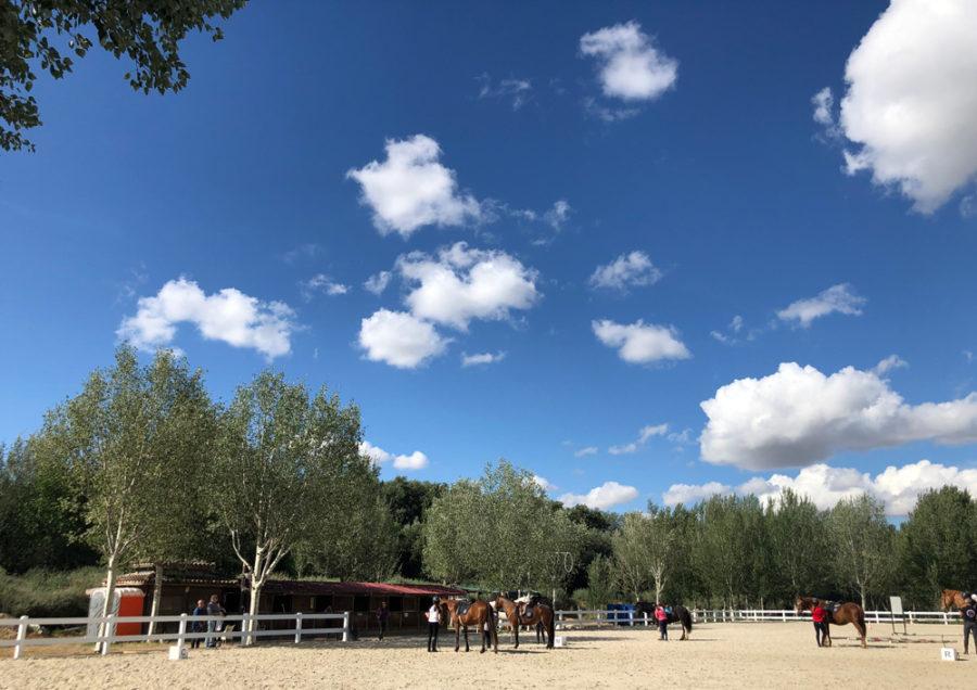 clases de equitación en la hipica